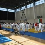 Девет състезатели представиха габровското джудо в София