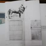 Публично обсъждане за лъвските фигури на моста над река Росица