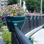 """Нови цветни кашпи на крайречната улица """"Софроний Врачански"""""""