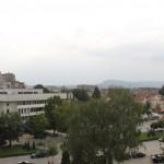Национална конференция, посветена на българските сортове, храни и породи