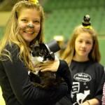Котки от цяла България отиват на карнавал в Габрово