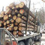 Над 5000 проверки по горите от началото на годината