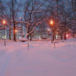 Нови обилни снеговалежи, съчетани с минусови температури