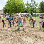 Водещият Андрей Арнаудов и ин витро деца засяват дръвче