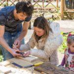 Възрожденските изкуства дърворезба, рисуване върху бръшлян и иконопис оживяха
