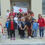 ПМГ – Габрово спечели областното на Ученическите екипи по първа помощ