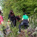 Над 2700 души се включиха в пролетното почистване