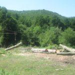 Проверката на сечта във вододайните зони на Габрово и Севлиево приключи