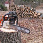 Кола, 2 каруци и 10 резачки за незаконен дърводобив задържаха през юли