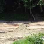 Мъж от търновско сече незаконно дърва край Ловни дол