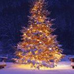 Културен календар за месец декември