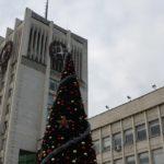 Новата коледна елха на Габров ще светне тази вечер