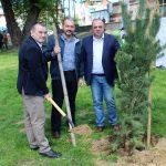 """Нови 85 дървета в Севлиево, благодарение на """"Идел Стандарт – Видима"""" и Общината"""